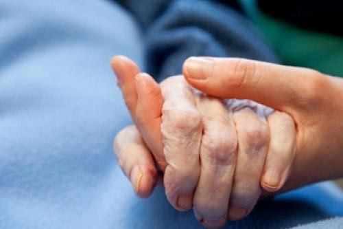 Sâm Hoa Kỳ - trợ thủ đắc lực cho bệnh nhân ung thư